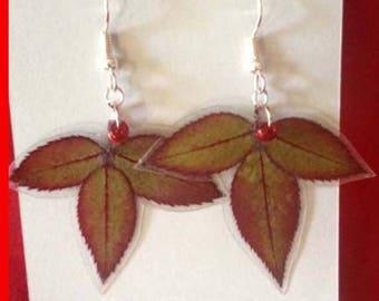 Rose Petal Earrings