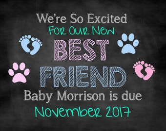 Our New Best Friend, Dog Pregnancy Announcement, Pregnancy Announcement