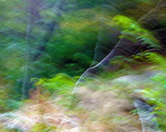 "Abstract photography ""Wind"" art print on Premiumfotopapier, non-fading, brilliant colors"
