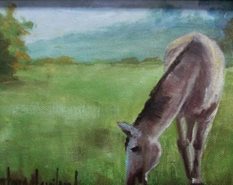 Horse Grazing, oil painting,miniature,canvas,framed,by Barbara Haviland