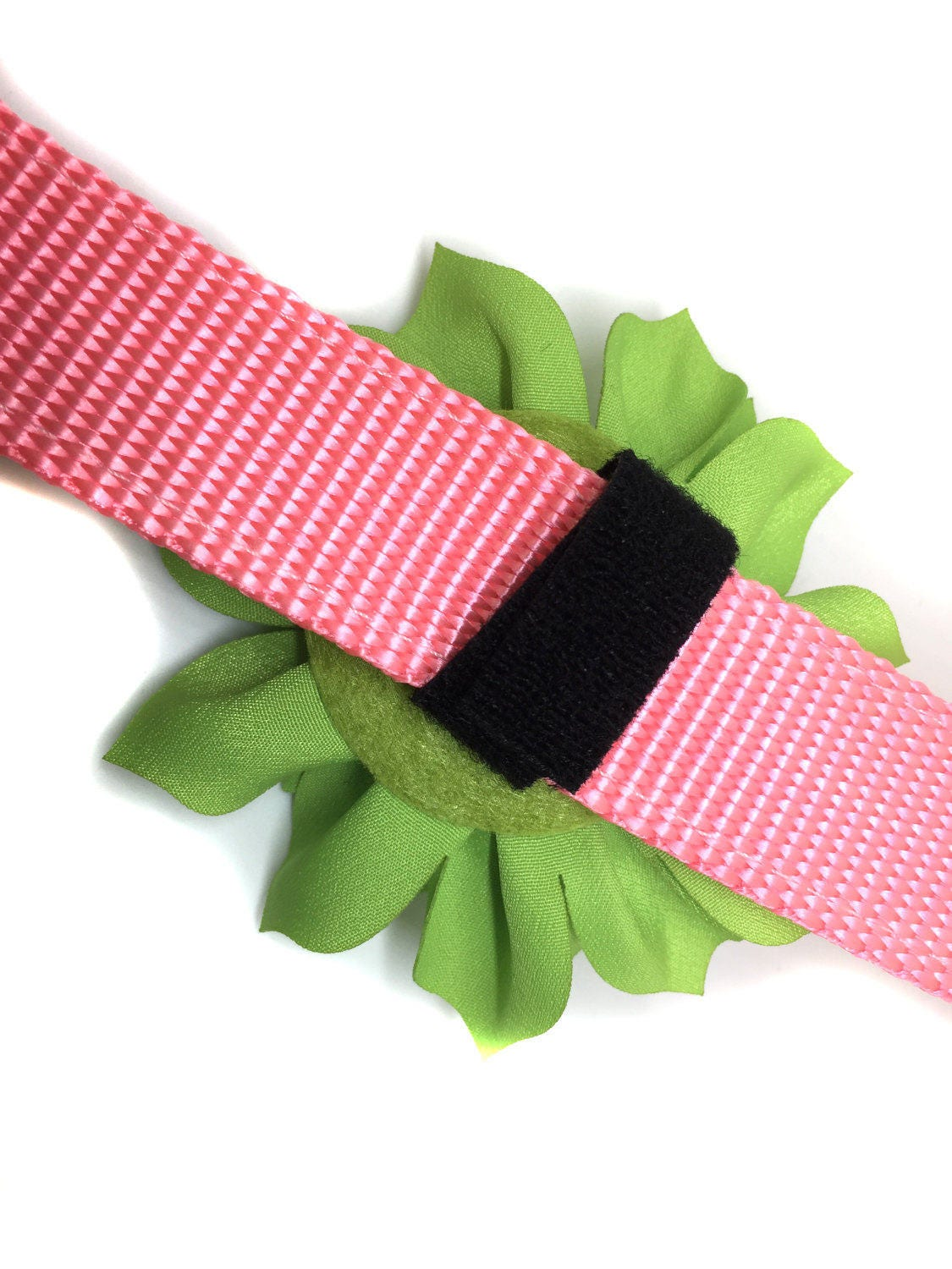 Small collar flower for dog collar attaches with velcro dhlflorist Choice Image