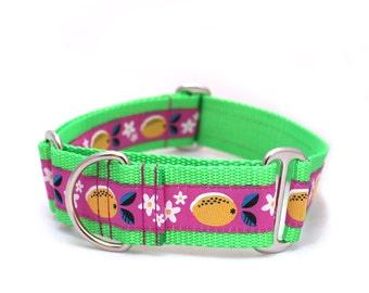 "1.5"" Juicy Lemons martingale or buckle dog collar"