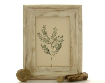 Botanical Art Print, Pine Branch Print, Forest Art Print, Limited Edition Print, Texas Pine Tree Print, Hand Pulled Tree Print
