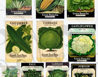 Veggie Seed Packet Collage Sheet