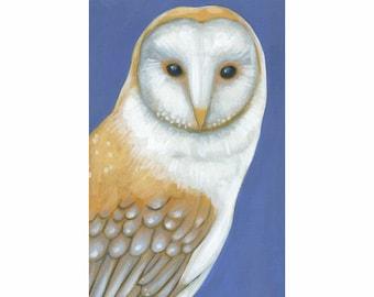 Barn Owl Original Acrylic Painting - Folk Art Wall Decor by Tamara Adams