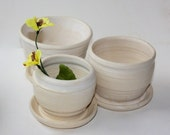 Stoney White Planter Trio with built in drainage for houseplants, cacti, succulents and herbs Handthrown in Vermont