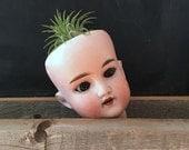 Antique Doll Head, Porcelain DEP 1909 Doll Head, Vintage Victorian