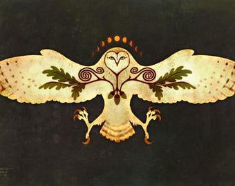 OWL TALISMAN ※ Barn Owl Oak Acorn Celtic Spiral Moon Phase Underneath Otherworld Art Print
