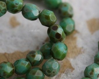 clearance .. MOSSY TURQUOISE TOTS .. 50 Premium Picasso Faceted Czech Glass Beads 4mm (3678-st)
