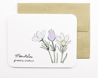 Manitoba | Prairie Crocus | Flowers of the Provinces and Territories card with envelope | Canadian flowers | Greeting card