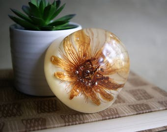 Vintage Flower Paperweight Natural Science Real Flower Preserved in Acrylic Dome Spring Decor Gift For Her Garden Passion Vine Flower