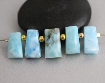 Larimar Plate Beads - Graduated - Larimar Beads - Briolette Set