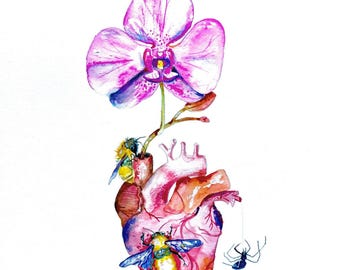 "Heart Watercolor Prints, Anatomical Heart, Orchid and Bee Watercolor Painting, 8""x10"""