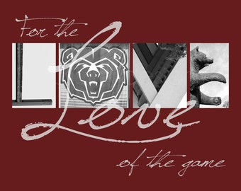 "Missouri State Bears ""For the Love of the Game"" Photographic Print"