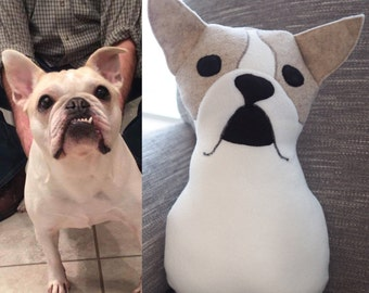 Custom plush dog // customized stuffed animal // puppy memorial // pet tribute gift // personalized pup // hand and matching dog