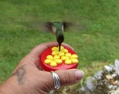 1 HUM-Drum™,  3 Port Mini Hand Held Hummingbird Feeders Made & Handcrafted in the USA