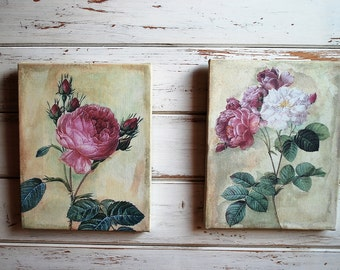 Rose Canvas Prints, Rose Prints, Rose Art, Canvas Prints, Canvas Art, Shabby Chic Rose Art, Shabby Rose Prints