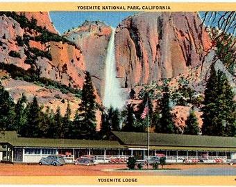 Vintage California Postcard - Yosemite Lodge, Yosemite National Park (Unused)
