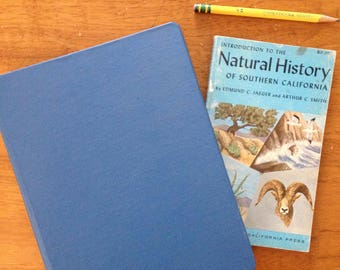 3 ring binder light blue classic canvas cloth linen back to school vintage small