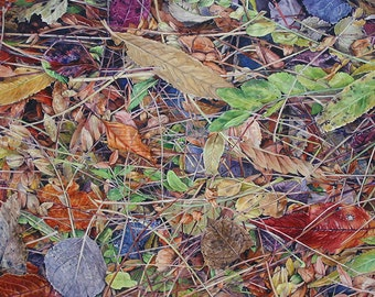 Watercolor Fall Leaves Painting- Hidden Treasure- Diamond In The Rough- 16x24- PhotoRealistic, Nature- Red, Green, Brown- Horizontal