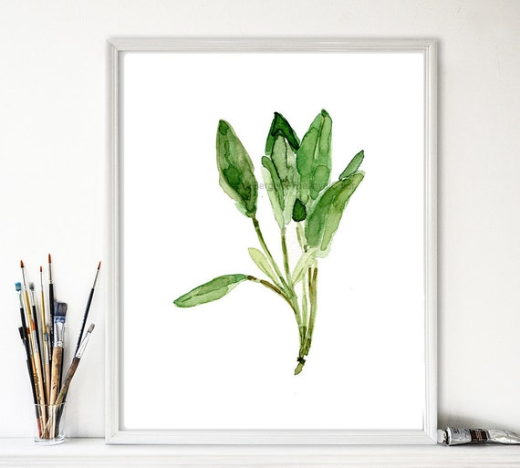 Sage leaves art print, sage watercolor print, herb print, botanical art, kitchen decor, minimalist art, sage green, thejoyofcolor