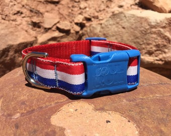 Dog Collar - French Flag with Blue Buckle