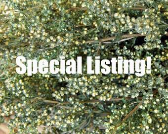 Special Listing for Nikki