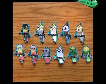 Entire Bird Sticker Collection - 11 stickers total! (Bird Sticker Collection Type 1)