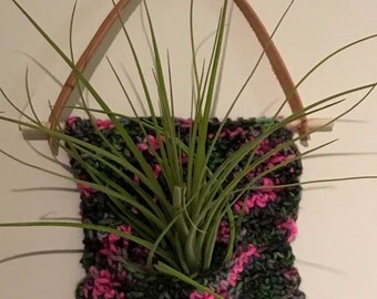 Air Plant Holder-wool leather wood