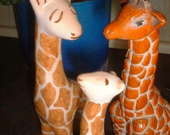 Three GIRAFFES Charming and Handsome