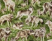 Wolf eyeglass case