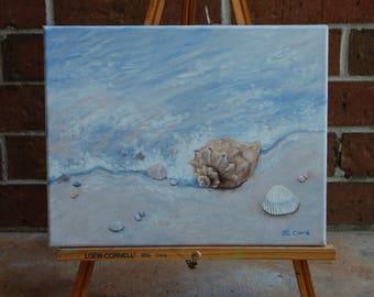 Seashells and Surf