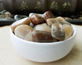 Rare Coffee Moonstone - 2PCS, Tumbled crystal, Goddess stone, healing crystal, crystal healing