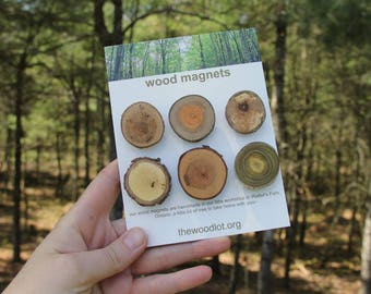 6 wood magnets - for your home or office