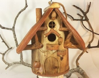 Large Songbird House for Common Birds
