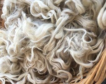 2 oz Washed White Suri Alpaca Locks, Natural, Unbleached, Silky, Spinning, Blending, Felting Fiber, Blythe Doll Reroot, Doll Hair
