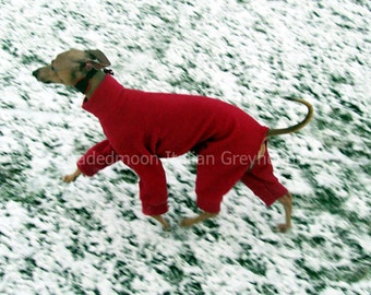ONE only - Ready to ship Italian Greyhound Jammies LARGE standard Red before purchase see item details for measurements
