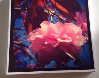Square Greeting Card - Cherry Blossom