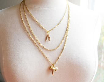 Shark Tooth Gold Layer Necklace