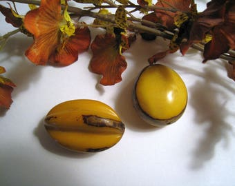 Yellow And Brown Tagua Nut Beads - Large Carved - Lovely Wax-like Surface - 2 Beads