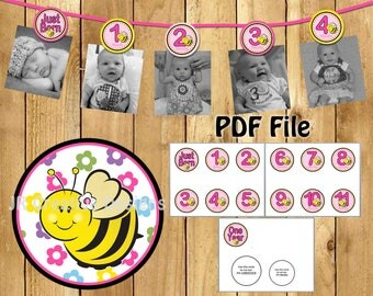 bee photo banner sweet as can bee picture banner 1 year banner girl 1st birthday party decorations hot pink yellow (DIY Printable PDF File)