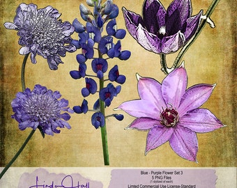 Blue and Purple Flowers Set 3 (Extracted)
