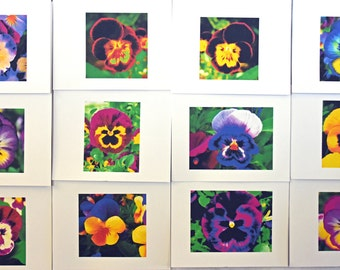 Painted Pansies Smiling at You - Notecards