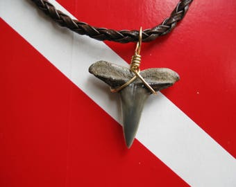 "Shark Tooth Necklace, Lemon Shark fossil, Venice-Florida, 18"" Braided leather, Brass wire wrapped"