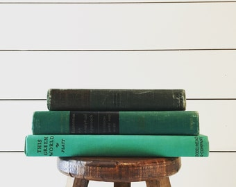Set of 3 vintage green books