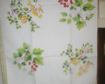 Cotton Kitchen Towel, Short Fringed Ends White with  Multi Colors Berries and Leaves
