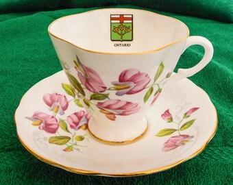 Windsor Sweet Pea Ontario Tea Cup Bone China England Souvenir