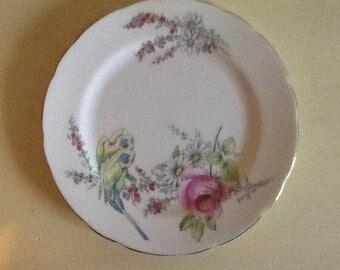 Paragon Princess Margaret Rose China plate Parakeets Floral Lovely