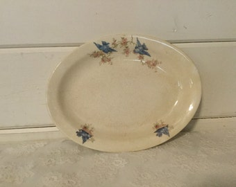 Vintage Bluebird Platter, Servingware,Deerwood, Cottage Chic