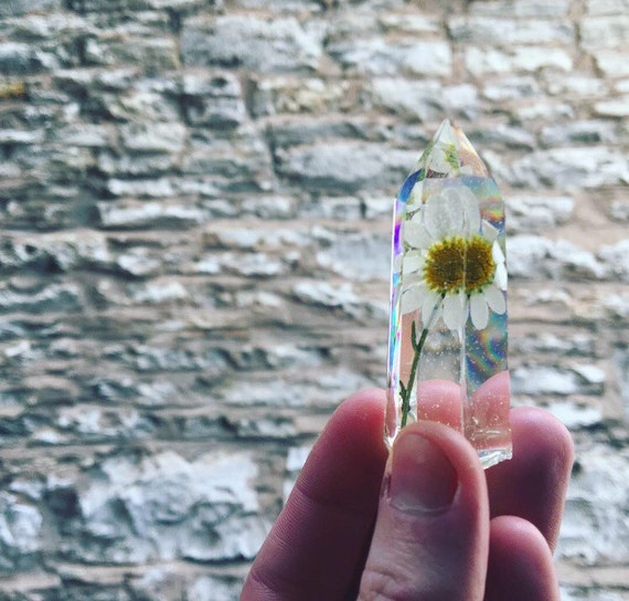 Genuine Preserved Daisy enclosed in Resin Prism Crystal Structure